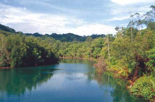 Galathea floden på Nicobarerne